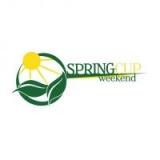 Basket - Spring CUP