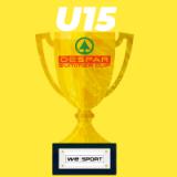 Despar Summer Cup U15