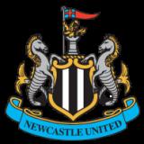 Newcastle (Contarini)